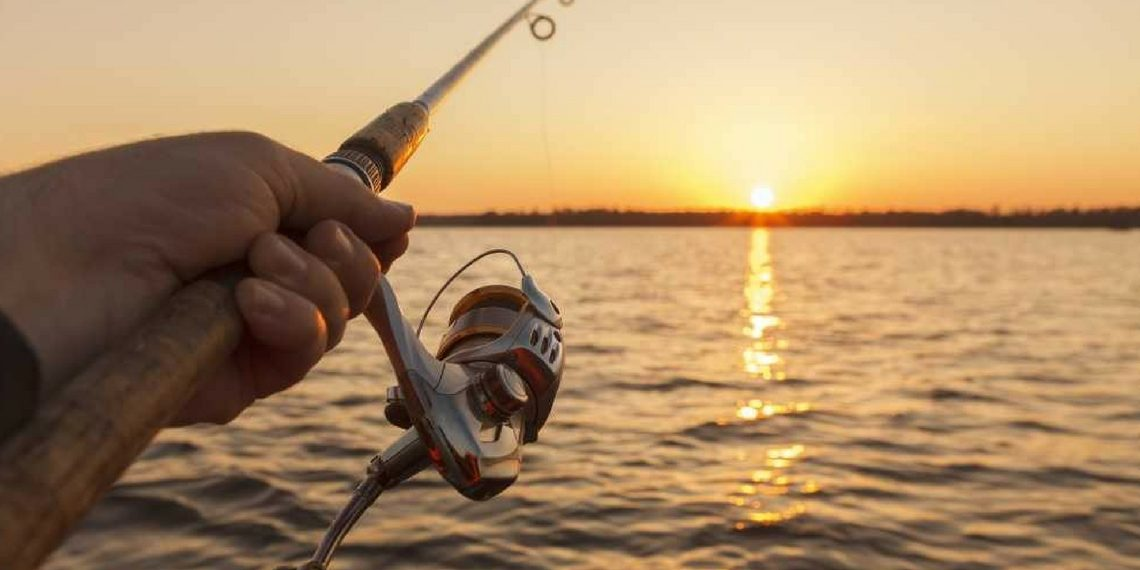 Schimano Nasci Fishing Reel Review