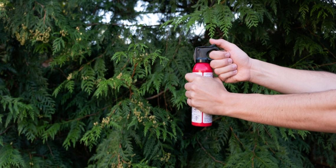 Best Bear Spray Reviews